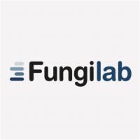 Faudagilb_logo