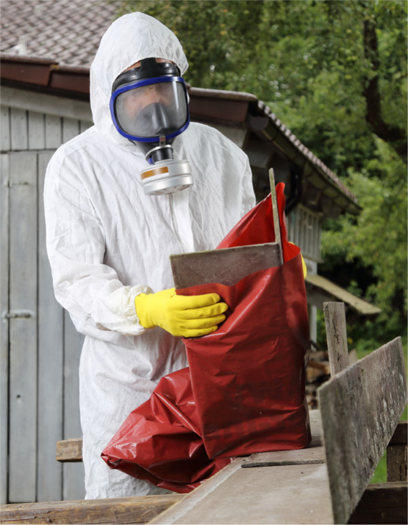 ASBESTOS REMOVAL INDUSTRY
